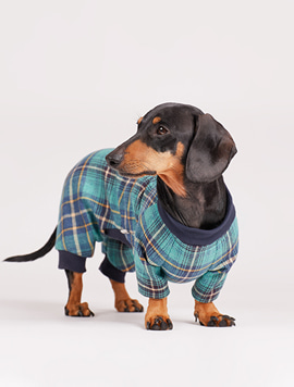 [Dachshund] woolen vintage check all-in-one